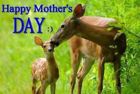 Happy Mother's Day from all